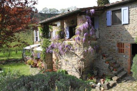 Romantic Artist's Retreat - Loro Ciuffenna - House