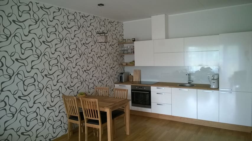 Cozy 2 room apartment - Talin - Apartamento