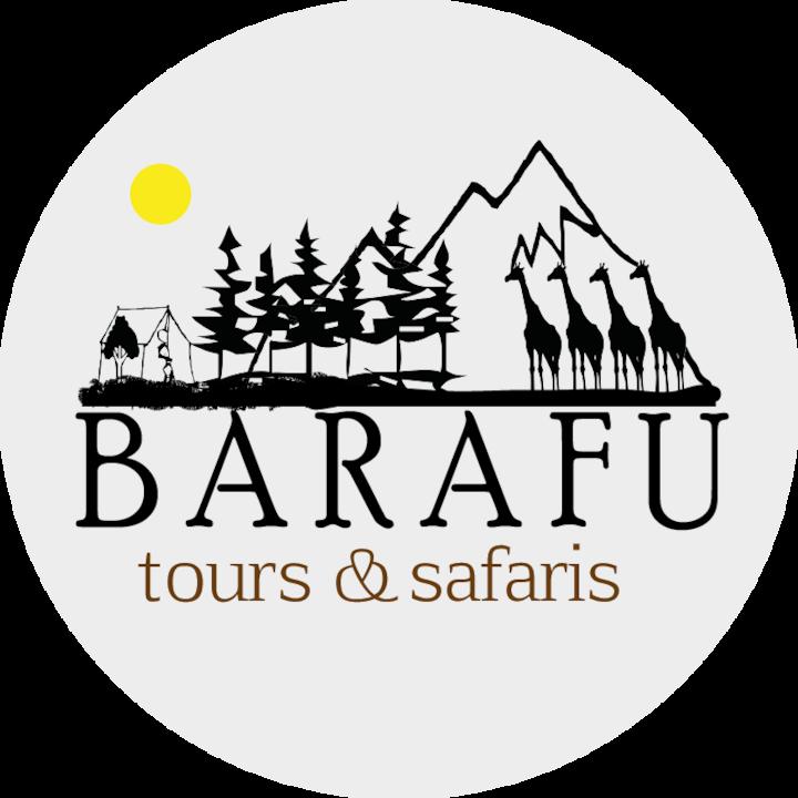 Barafu Tours & Safaris