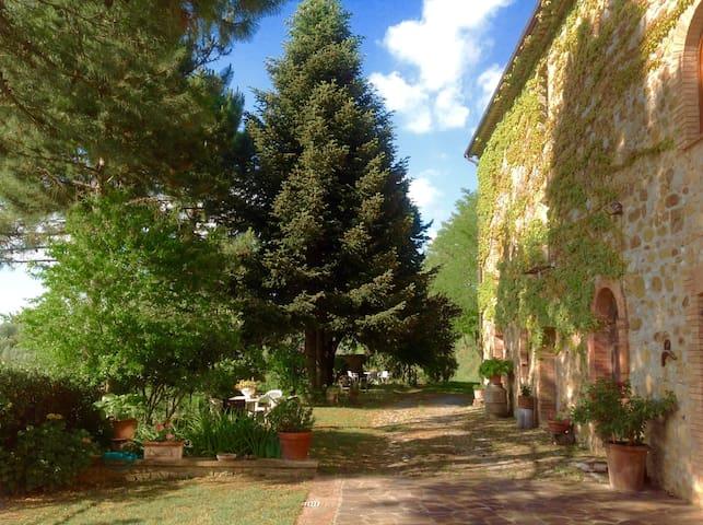 Stone villa XIXCentury super view - Ficulle - Villa