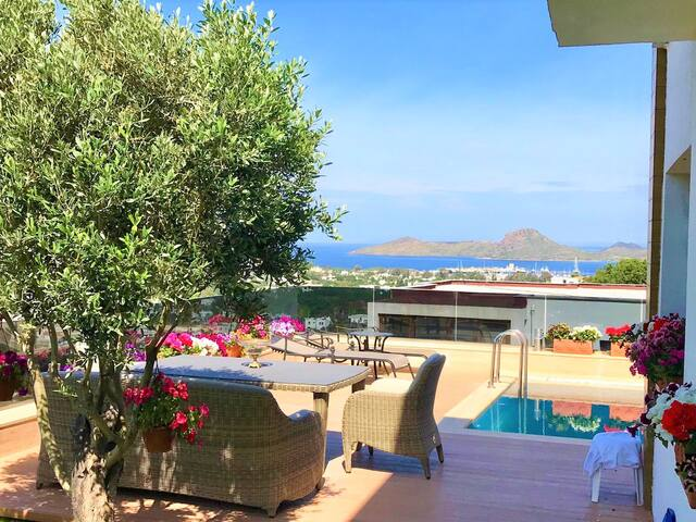 villa with private pool and amazing seaview