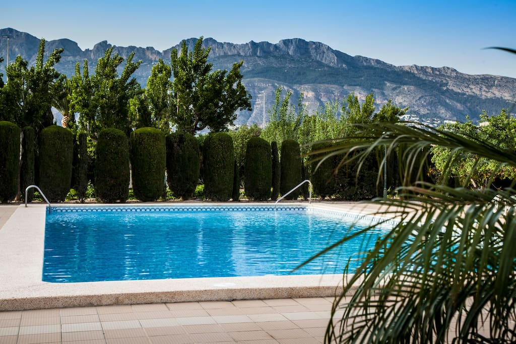 Olympic sized swimming pool with view over mountains
