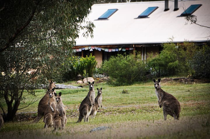 Grampians Retreat @ Kailash - Group Bookings