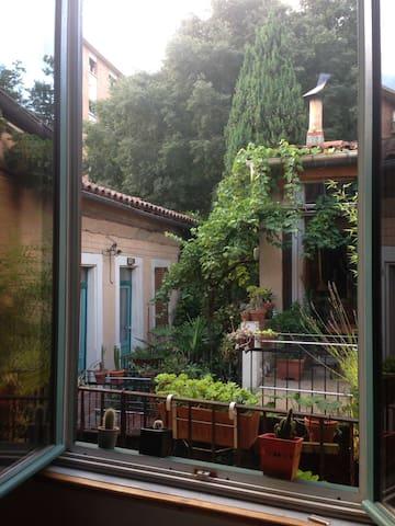 Chambre en plein cœur de Toulouse