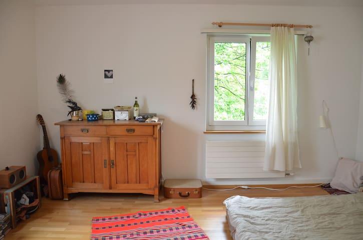 Room in shared flat - Zurique - Apartamento