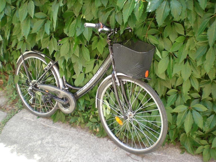 Une bicyclette pour un petit tour....