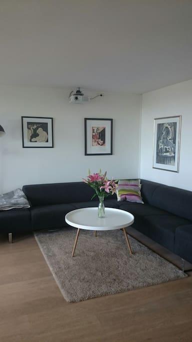Sofa in the main room