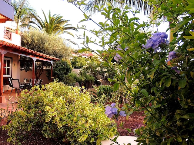 Villa Sea and Teide