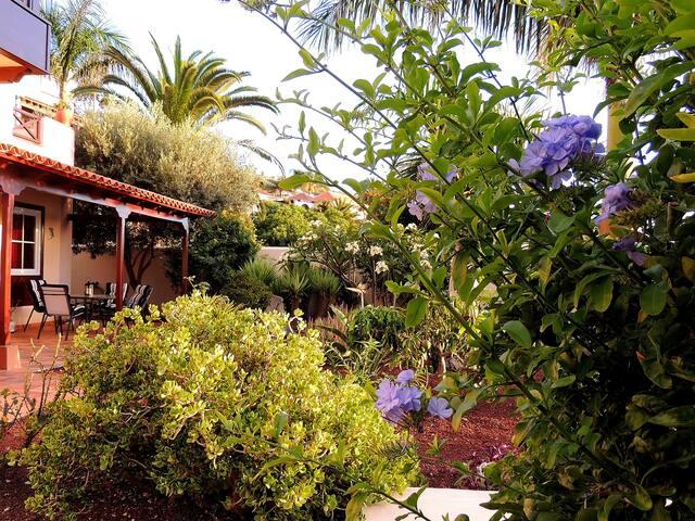 Villa Sea and Teide - El Sauzal - Chatka w górach