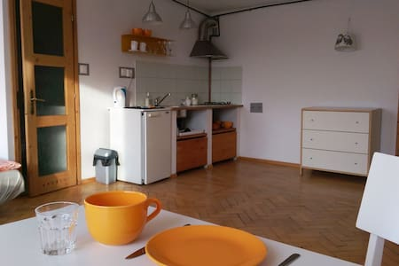 Lovely sunny flat, green, good Wifi - Appartement