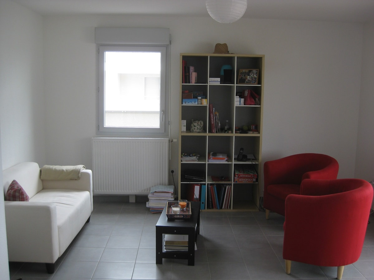 Beautiful Room In Toulouse   Apartments For Rent In Toulouse, Midi Pyrénées, France