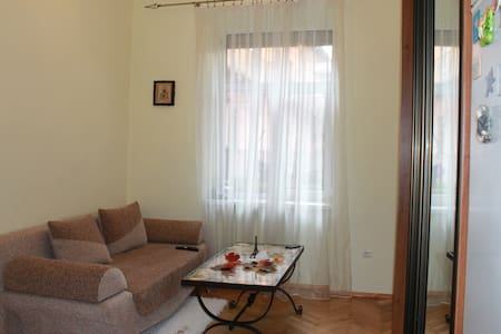 Apartment in the center of Lviv - L'viv