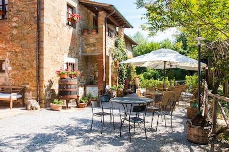 Casa Viola Tuscan Farmhouse wifi - Bucine (AR) - Apartment