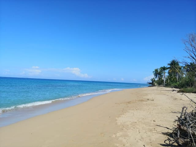 Rincon Sol y Playa 104