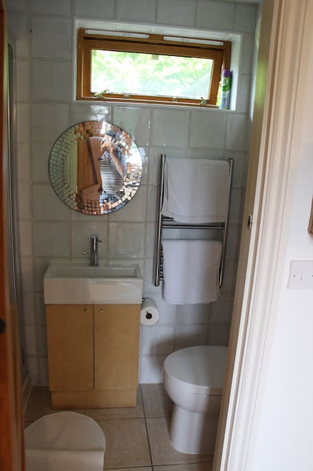 Modern bathrooms with shower basin and toilet