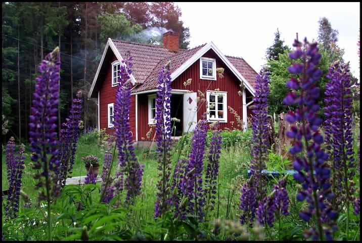 Klassisk svensk hus fra 1830. - Tävelsås - Chatka