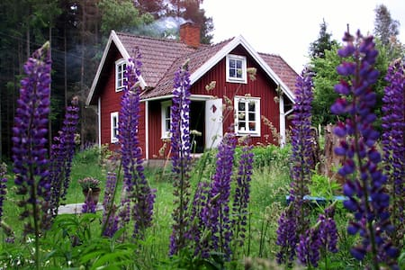 Klassisk svensk hus fra 1830. - Tävelsås