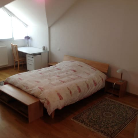 Big room,private shower& toilet - Ferney-Voltaire - Apartment