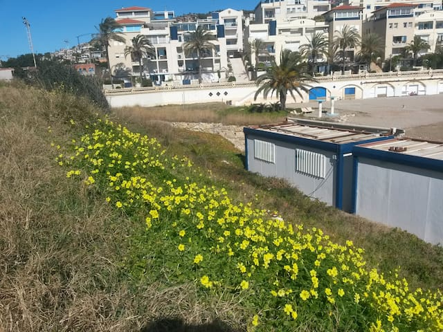 Terraza con vistas al mar - ABAMAR