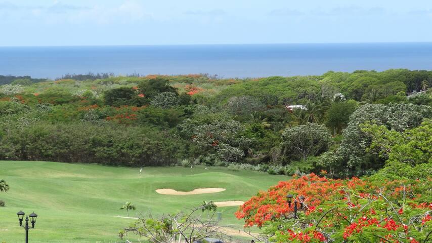Royal Westmoreland Golf Villa - St James - House