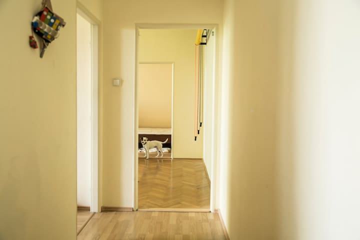 Photographer's studio - Piešťany - Apartment