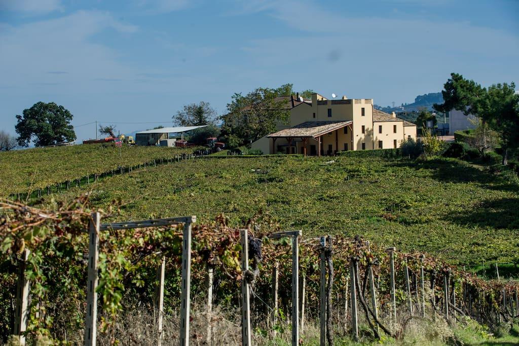 Il casale dell'800 della Famiglia Ciavolich luogo di produzione e conservazione del Vino Ciavolich