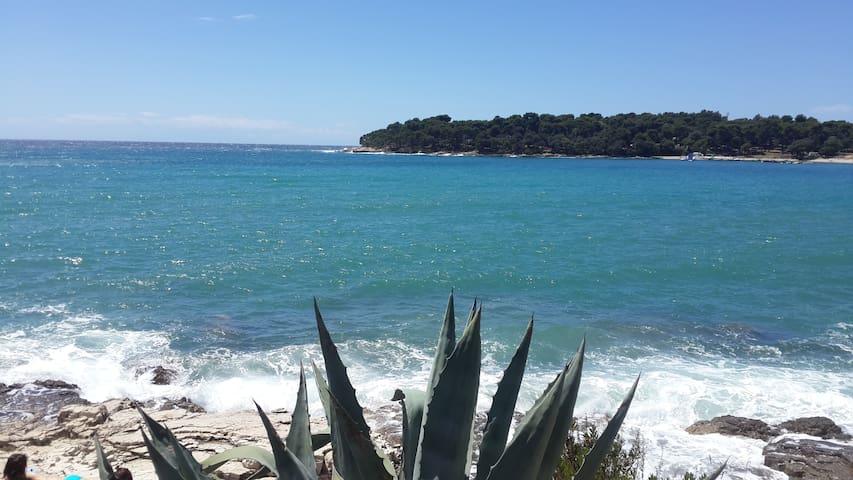 Spacious seaside villa with garden terrace
