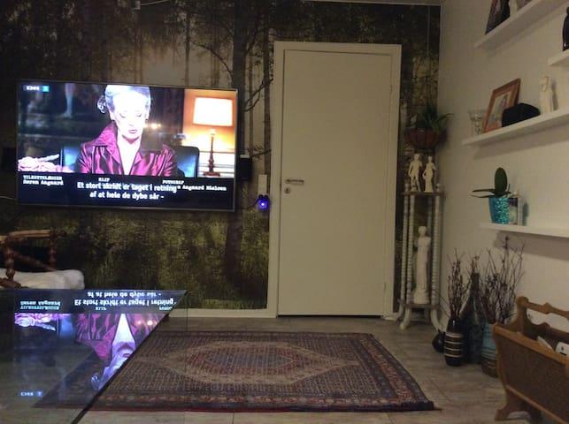 hyglig lille værelse med adgang til hyggelig stue - Brabrand - Hus