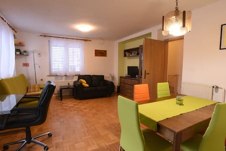 Kranj, lovely central apartment | airport; LJ;Bled