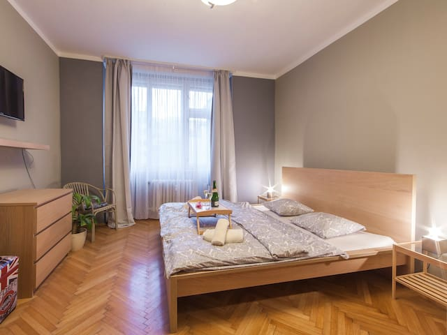 Modern apartment with balcony in the centre of PRG