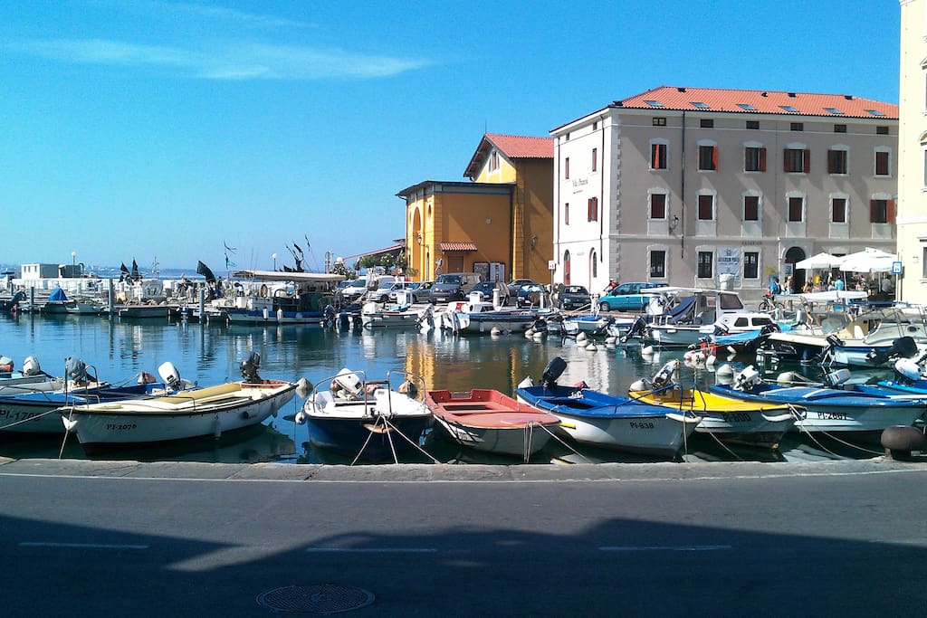 Harbour of Piran near Tartini square with restaurants, cafes, aquarium ...