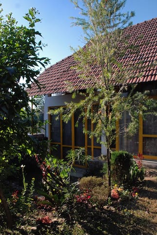 Little cottage in a garden - Dehradun - Talo