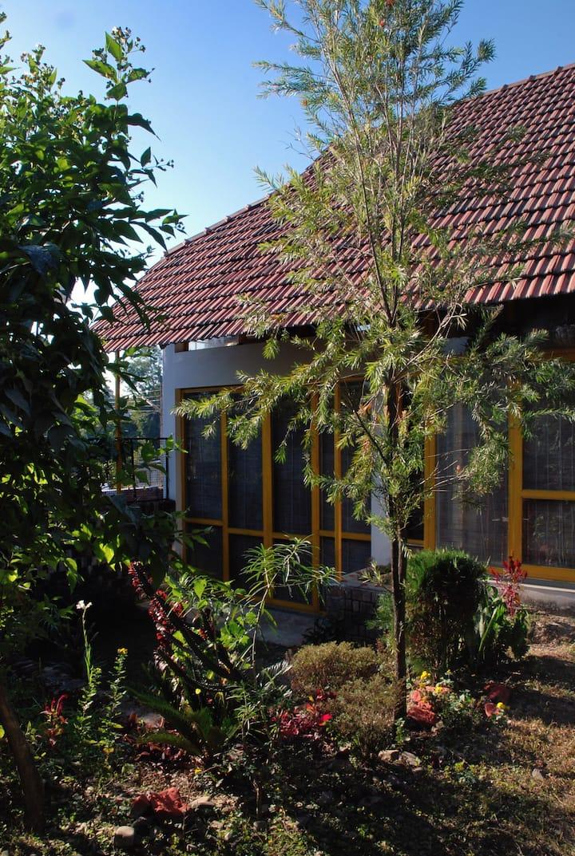 Little cottage in a garden