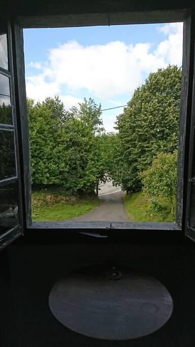 vue par la fenêtre de la chambre verte