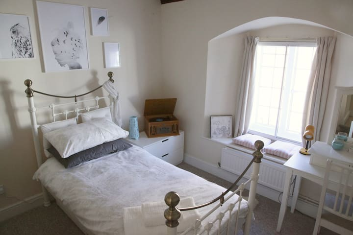 Single room in period city centre apartment - Salisbury - Lakás