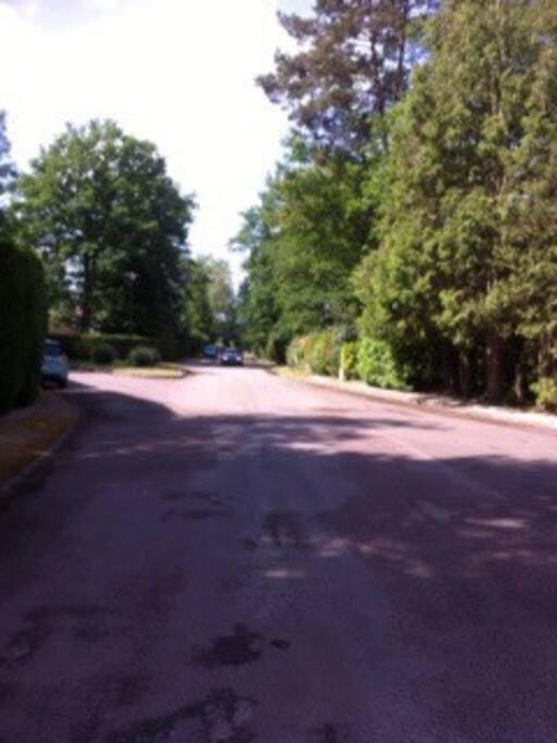 Une rue du domaine.