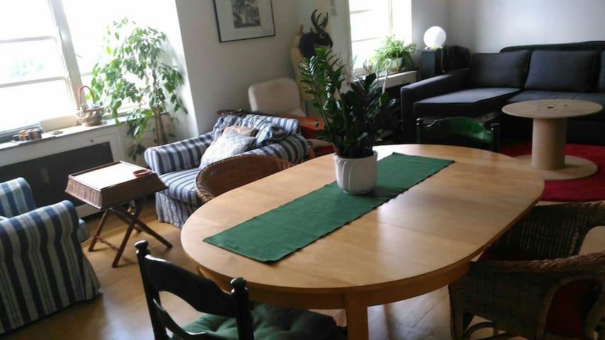 Private bedroom in cozy flat near Porte de Hal - Sint-Gillis - Pis