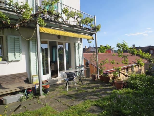 Kleines, schmuckes Häuschen - Schaffhausen - House