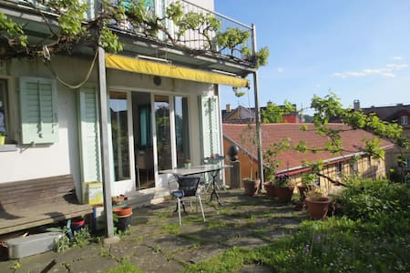 Kleines, schmuckes Häuschen - Schaffhausen - Casa