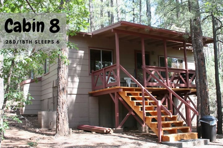 2 Bed 1 Bath Sleeps 6 Cabin Under The Pines #8
