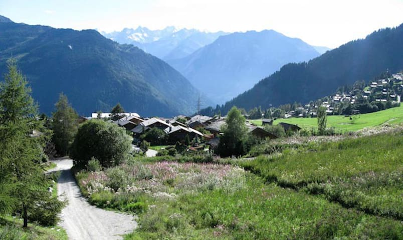 2 bedrooms with amazing view - Verbier - Apartment
