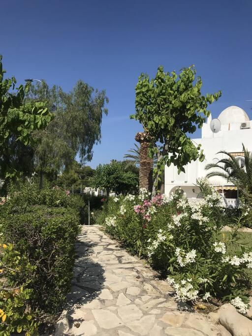 jardin y parques urbanizacion