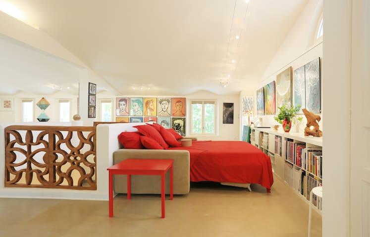 Atelier d'artiste en Provence verte - Brignoles - Loft