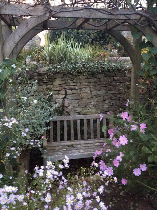The Autumn garden has that elegant decay with the best flowers still awaiting that first frost...