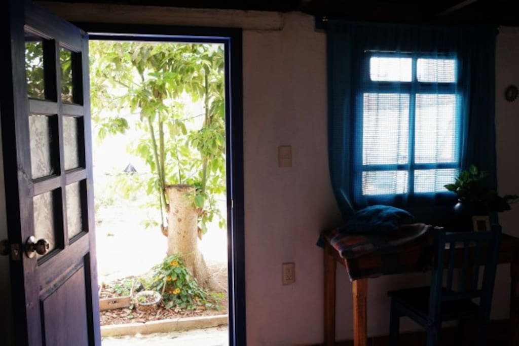 """san cristobal de las casas black singles I'd only expected to spend a week or so in san cristobal de las casa but  what does a $5 room in san cristobal, mexico  you don""""t even get a single bed ."""