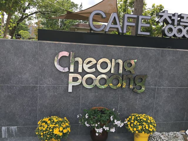 커피향 가득한 갤러리와 멋진정원이 있는 오죽헌앞 게스트하우스 - 강릉시