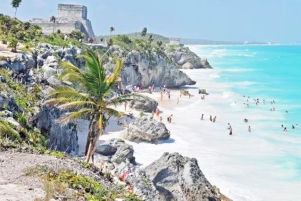 Tulum beach and ruins, just 45 minutes away by car or from public transit--which is quite easy, clean and cheap here (also air conditioned).  Staying on Tulum beach costs a fortune and has VERY limited dining options.  Staying here in Playa is convenient and also gorgeous, way cheaper food and lodging and more diverse selections, plus you can go to Tulum for the day VERY simply!