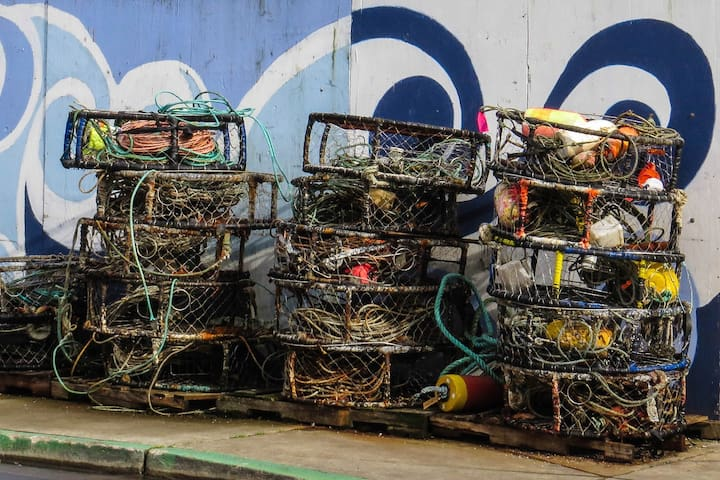 Crab traps in Newport.