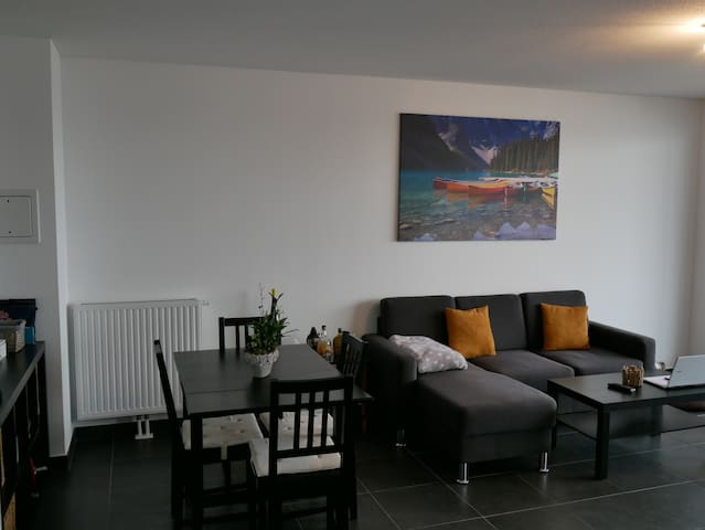 Appartement en attique orienté plein Sud - Lampertheim - Wohnung