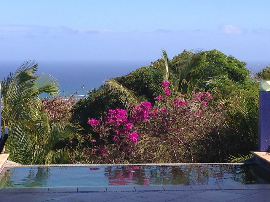 overlooking plunge pool and caribbean sea from great room